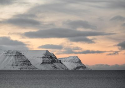 Westfjords discovery