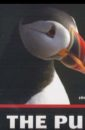The Puffin